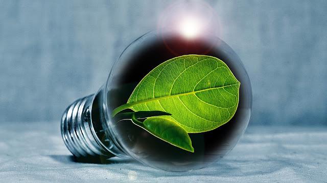 podsumowanie oszczędności w styczniu - Czytaj dalej »