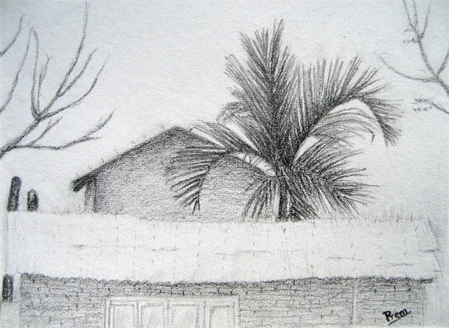 Sketch, Painting and Colored Pencil Drawing of Palm Tree