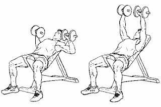 1. Incline Dumbbell Press
