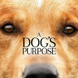 Poster A Dog's Purpose 2017