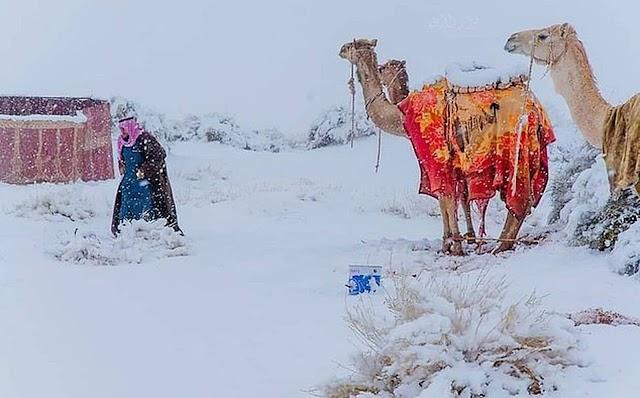 O καιρός τρελάθηκε: Χιόνια στην έρημο Σαχάρα – Παγετός στη Σαουδική Αραβία
