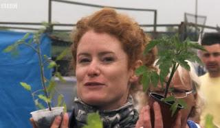 Alys shows tomato plants