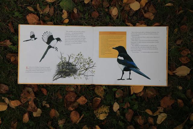 luontoaiheinen lastenkirja