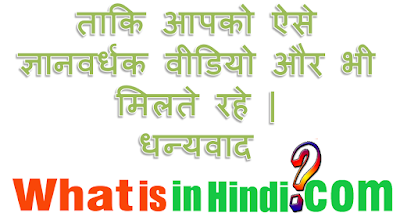 What is the meaning of Foodie in Hindi