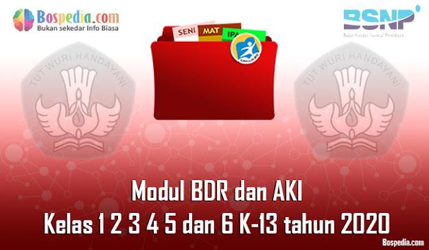 Modul BDR dan AKI untuk Kelas 1 2 3 4 5 dan 6 K-13 tahun 2020