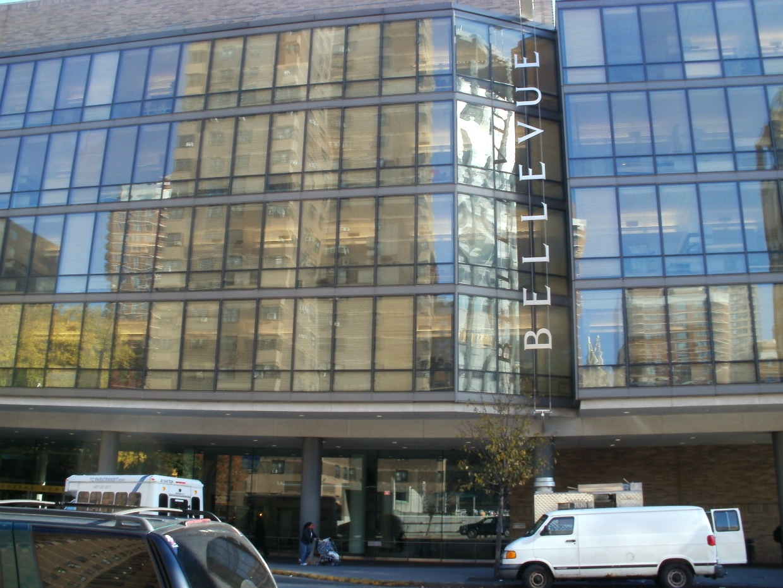 Midtown Blogger Manhattan Valley Follies First Avenue S
