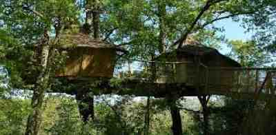 Tree Houses Alicourts, Loire Valley, France