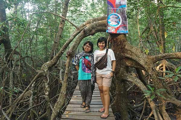 Mangrove beteng batang atau mangrove di desa dabong kubu raya