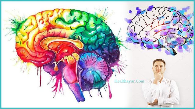 The Thoughtful Brain