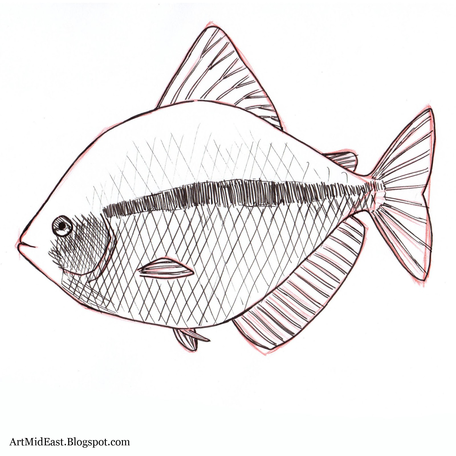 fishes drawing - photo #19