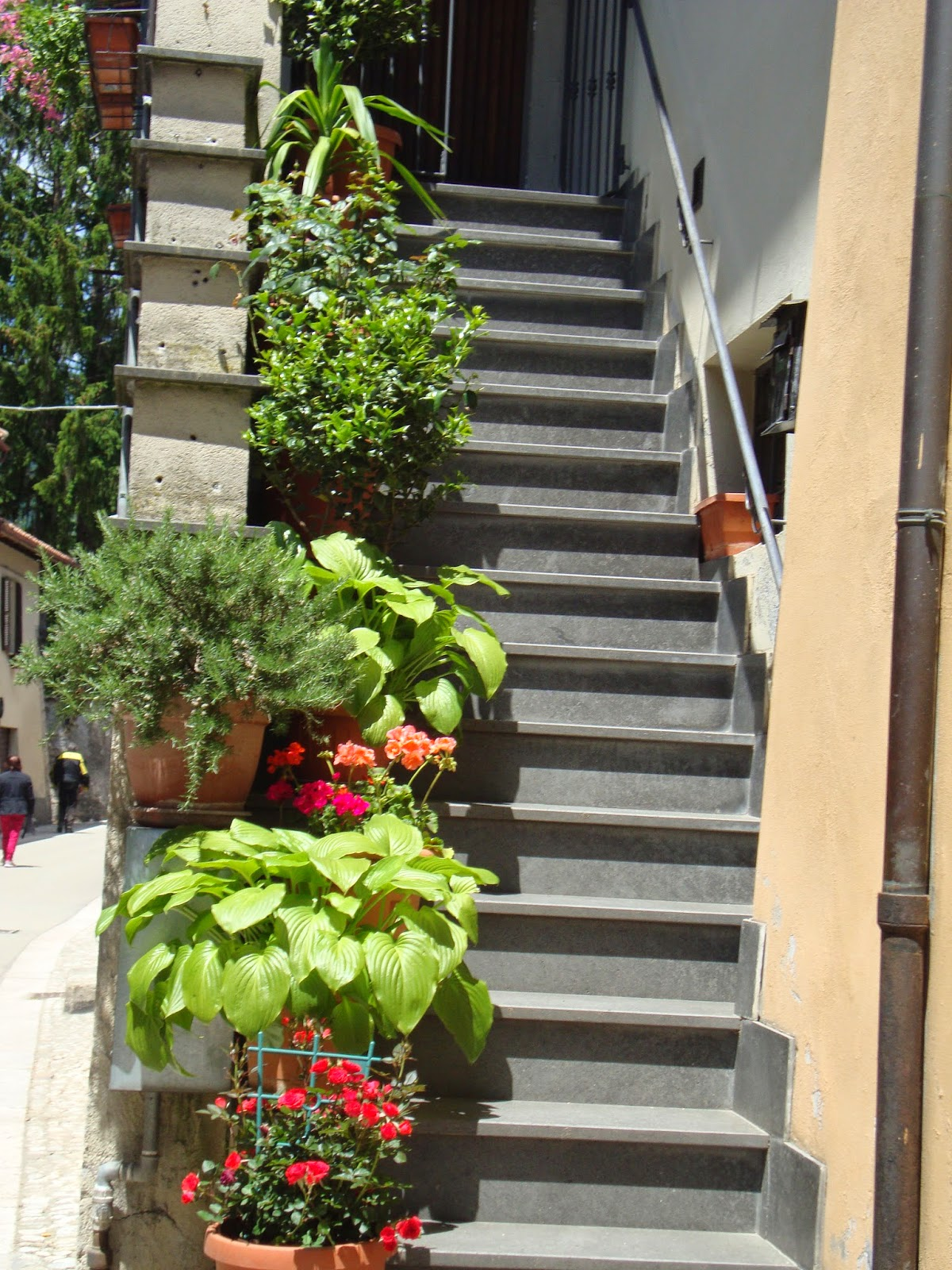 Un piccolo giardino in citt fiori e piante sulle scale - Scale in giardino ...