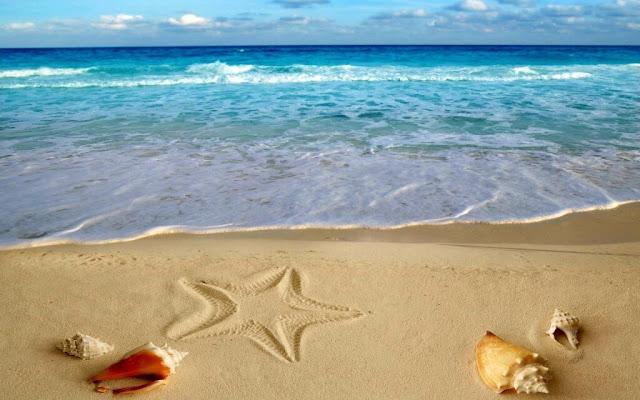 Bãi biển Ngân Than