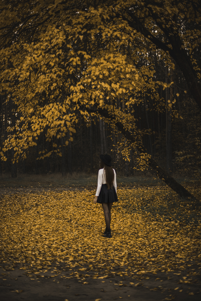 lightroom autumn preset