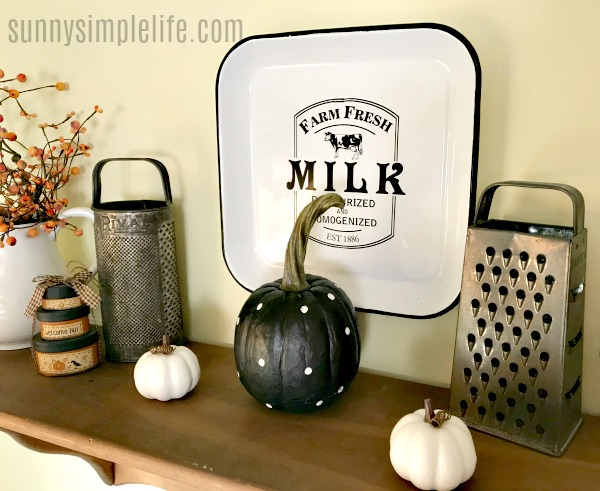 vintage graters, polka dot pumpkin