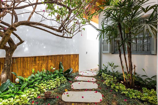 quintal-arrumação-flores-plantas