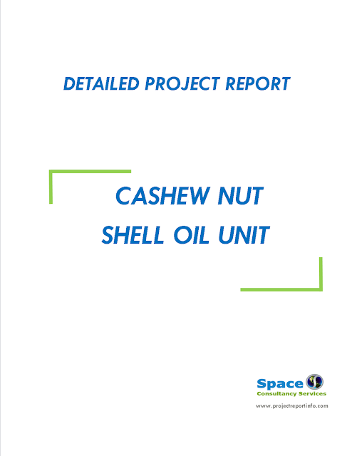 Project Report on Cashew Nut Shell Oil Unit
