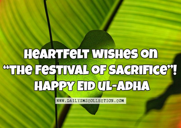 happy bakrid wishes quotes images
