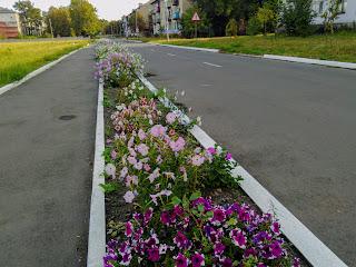 Новогродовка. Донецкая обл. Улицы города
