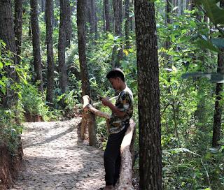 Puncak Songgo Langit