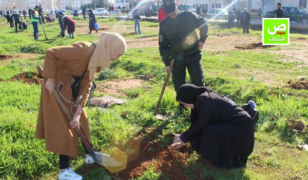 القيام بعملية تشجير لحوالي 800 شجيرة بالحرم الجامعي بالشلف