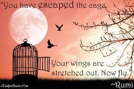 Rumi Set me free