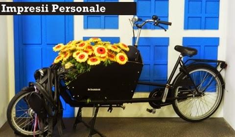 bicicleta-Olanda