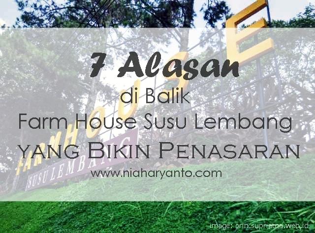 farm-house-susu-lembang2
