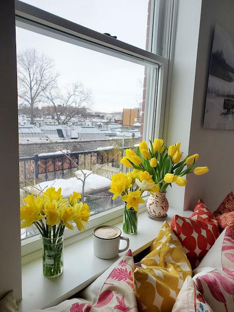February windowsill