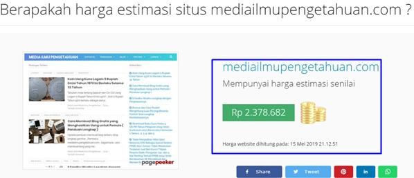 contoh hasil estimasi harga domain blog-website