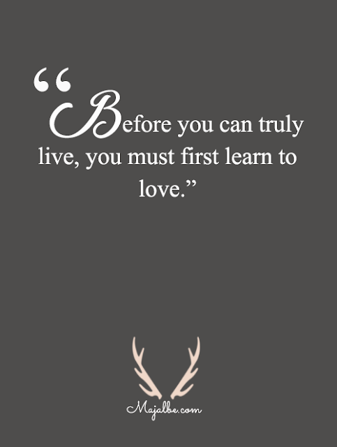 Learn To Love Love Quotes