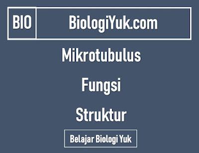 Mikrotubulus: Fungsi dan Struktur Lengkap