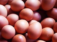 Manfaat Telur Ayam Bagi Kesehatan