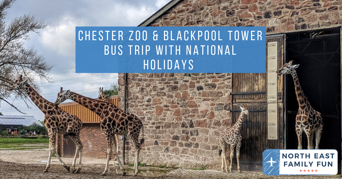 Chester Zoo & Blackpool Tower Bus Trip with National Holidays - A Review