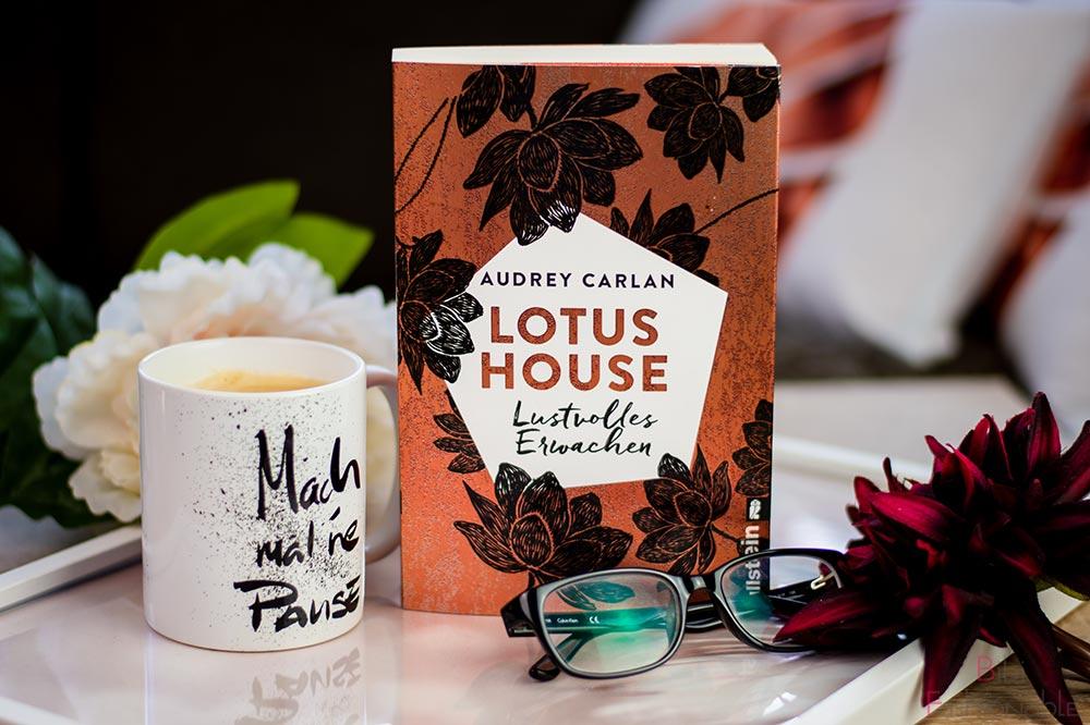 Ullstein Audrey Carlan Lotus House Lustvolles Erwachen Titelbild