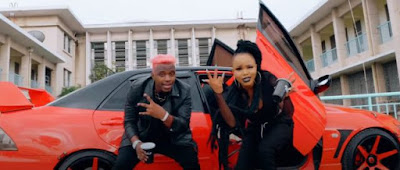 DOWNLOAD VIDEO | Rosa Ree Ft Rayvanny - Sukuma Ndinga Remix (Official Video)