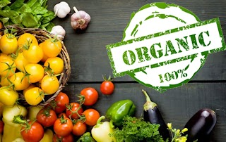 These Facts About Organic Vegetables You Need To Know