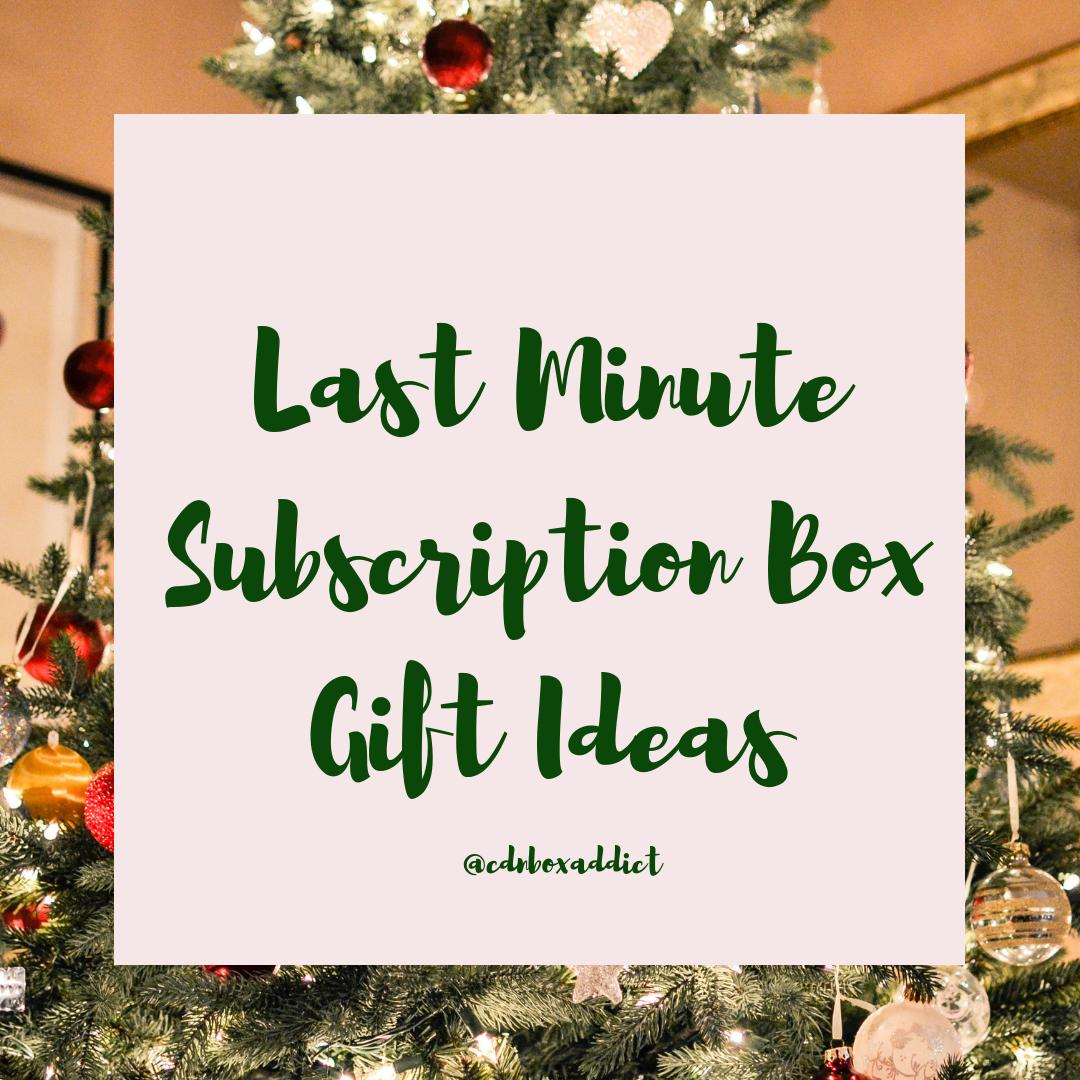 e47226ba534ff Last Minute Subscription Box Gift Ideas!