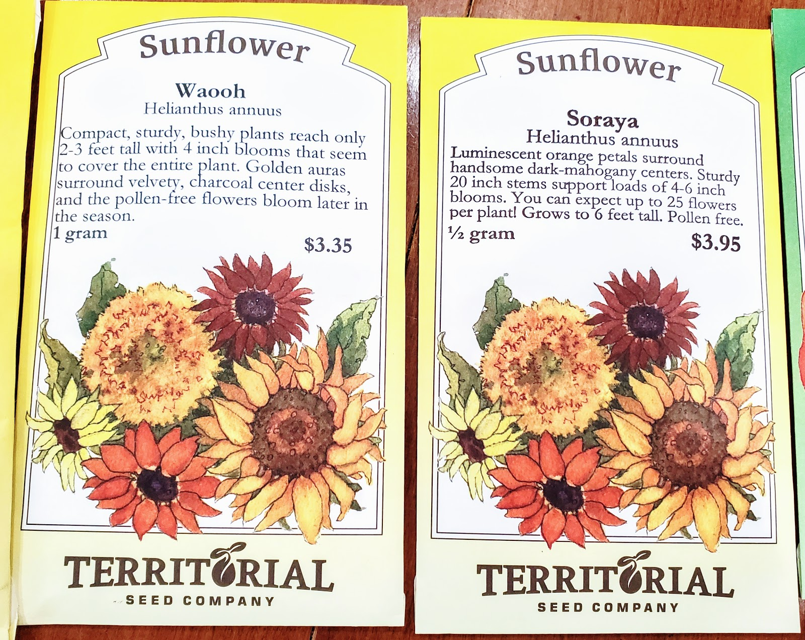 sunflower seeds from territorial seed company