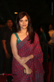 Telugu Television Anchor Anasuya Stills in Saree at Gemini TV Puraskaralu 2016 Event  0065.JPG
