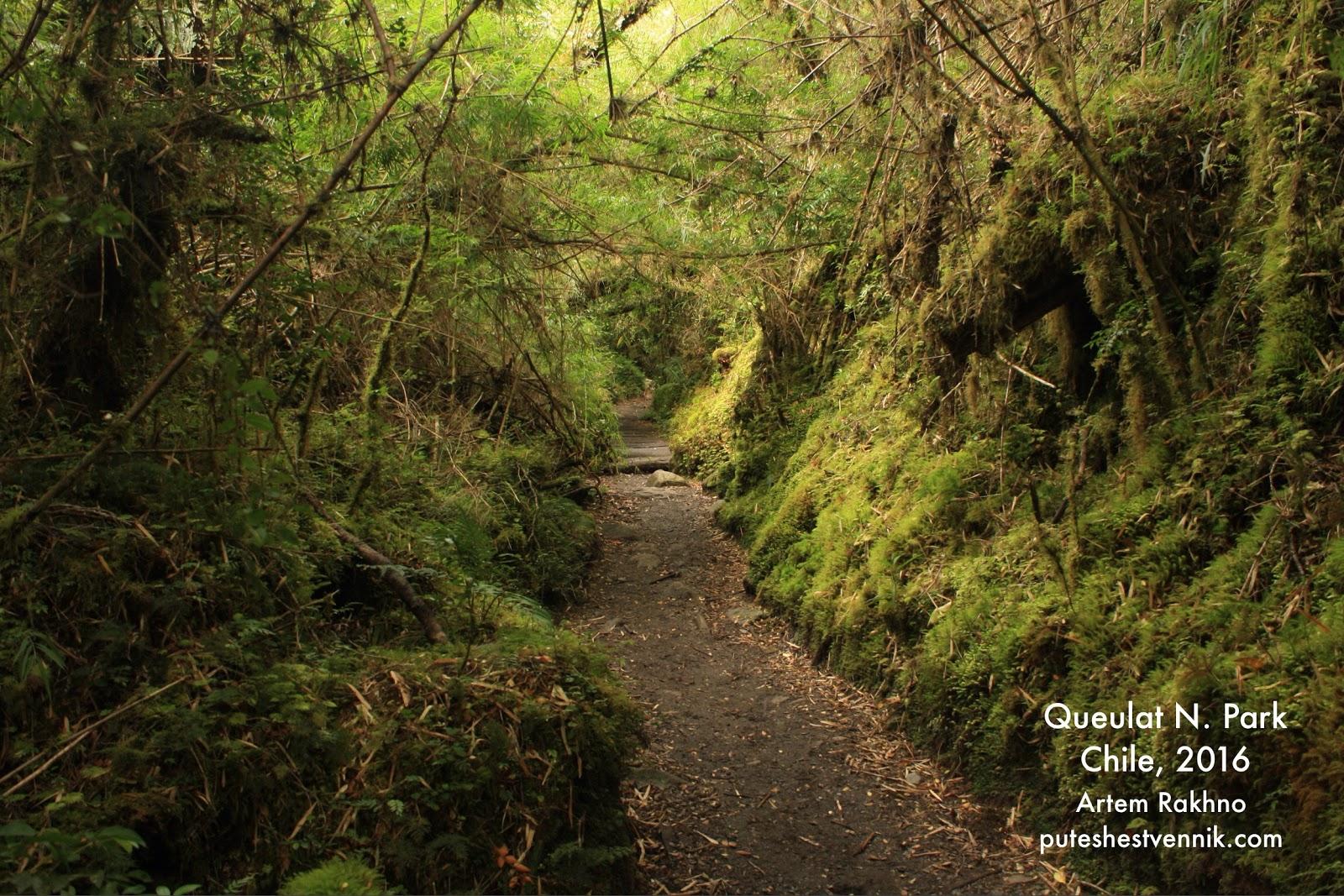 Тропа в национальном парке Келат