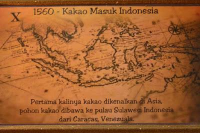 sejarah masuknya kakao ke Indonesia dibawa dari caracas venezuela