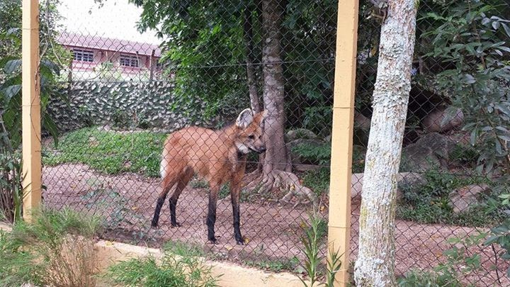 Zoológico de Pomerode