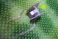 Schleife anbinden: 50pcs Wedding Candy Boxes Butterfly Laser Cut Kartonage Schachtel Bonboniere Geschenkbox Hochzeit (Purple)