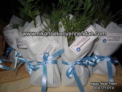 Eymen Bebek Fidanı - İstanbul 4