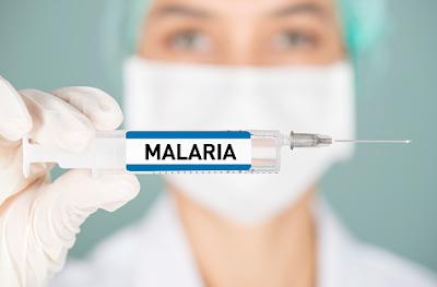 Penyakit malaria adalah sebuah gangguan infeksi yang ditemui pada tubuh manusia. Infeksi ini bisa terjadi karena disebabkan oleh gigitan nyamuk yang telah terinfeksi parasit yang menyebabkan malaria. Sehingga apabila terinfeksi malaria penderitanya akan mengalami gejala-gejala yang akan sangat mengganggu keadaan aktivitas keseharian dari penderitanya.  Maka dari itu penting dalam melakukan pencegahan sebelum nyamuk yang telah terinfeksi malaria menyebarkan infeksinya kepada siapapun. Nah untuk mengetahui lebih lanjut dalam membaca bahasan penyakit malaria pada tubuh manusia, silahkan di simak dan baca dengan yang telah tersaji di bawah ini.     Penyakit Malaria Pada Tubuh Manusia  Malaria merupakan sebuah gangguan infeksi malaria yang ditemui pada tubuh manusia. Hal ini bisa terjadi disebabkan oleh gigitan nyamuk yang telah terinfeksi parasit malaria. Kondisi ini akan menimbulkan efek buruk yang diantaranya adalah demam naik turun, sakit kepala, nyeri otot, dan sebagainya.  Maka dari itu penting untuk mengerti dan mengenali keadaan dari kondisi ini, agar didalam melakukan aktivititas keseharian tetap melakukan pola hidup sehat dan menjaga lingkungan tetap bersih. Nah untuk mengetahui lebih lanjut dalam membaca bahasan dari penyakit ini, silahkan di simak dan ikuti dengan sebagai berikut ini :  1. Pengertian Malaria  Malaria adalah penyakit yang disebabkan oleh parasit. Malaria menyebar melalui gigitan nyamuk yang sudah terinfeksi oleh parasit. Malaria bahkan bisa mematikan jika tidak ditangani dengan benar. Infeksi malaria bisa terjadi cukup dengan satu gigitan nyamuk.  Malaria jarang sekali menular secara langsung dari satu orang ke orang lainnya. Contoh kondisi penularan penyakit ini adalah jika terjadi kontak dengan darah penderita atau janin bisa terinfeksi karena tertular dari darah sang Ibu.  2. Gejala Malaria  Gejala malaria akan muncul jika digigit oleh nyamuk yang sudah terinfeksi oleh parasit Plasmodium. Masa inkubasi, yaitu waktu antara gigitan nyamuk mal