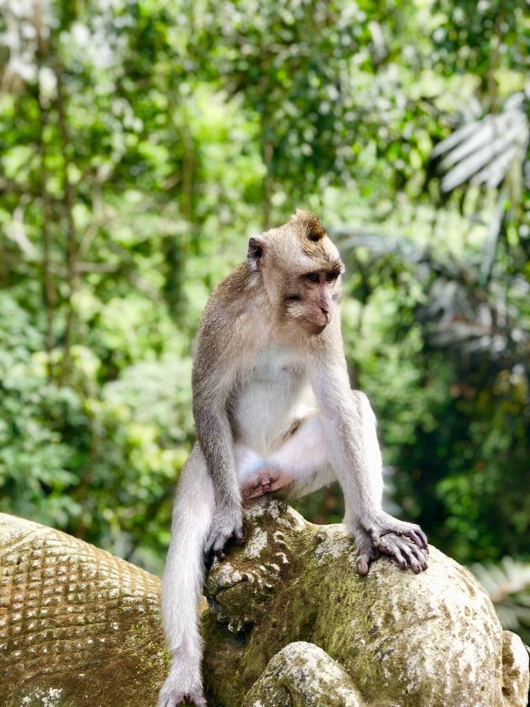 MY BALI TRIP PART ONE: JULY 2019
