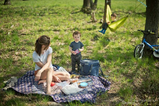 co jesc na pikniku, przekaski piknikowe