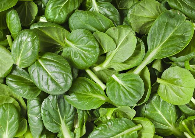 15 Makanan Kaya Oksigen Terbaik - Termasuk Dalam Diet Anda!