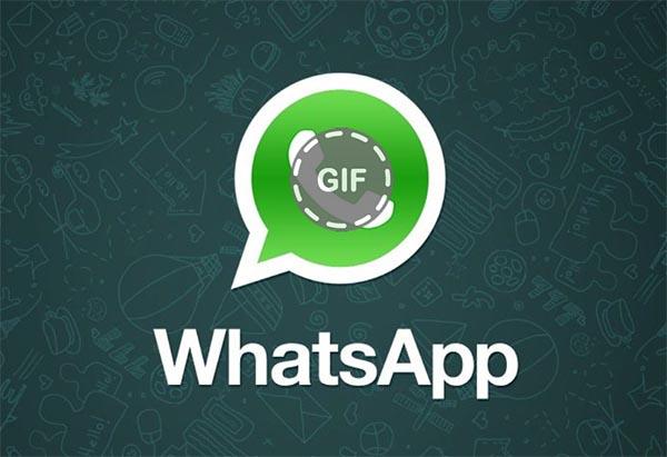 Guía sencilla para enviar GIF a través de WhatsApp