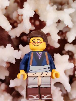 Lego abuela coral